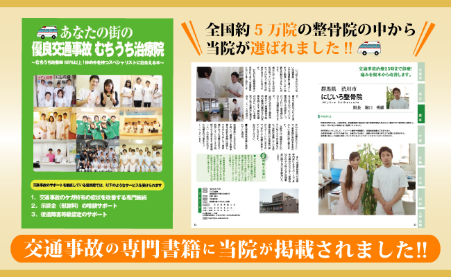 niziiro_book (1)